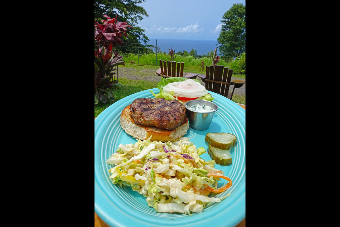 Waipi'o Cookhouse, Waipi'o, Chef Tiny, Chef Tiny Gonzalez, Chef Mario Gonzalez, The Big Island, Hawaii, smile, tourist attraction, ocean, nature, farm-to-table, first farm-to-table restaurant in U.S., NY See You Later, New York See You Later, NYSeeYouLater, NYSeeYouLater.com, Subway Handle, NYC Subway Handle, NYC,