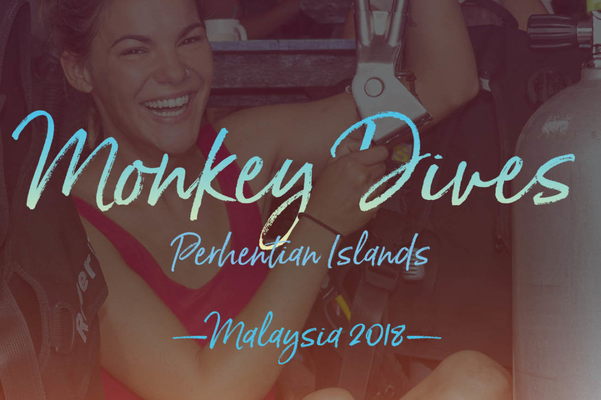 Photo of a Monkey Diver holding the Subway Handle in the Perhentian Islands, Malaysia. We went diving at D'Lagoon, Sail Rock, Stingray Alley, T3, Terembu Tigga and Tanjung Basi.
